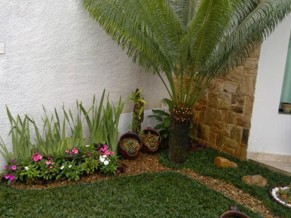 grama sintetica em jardim de inverno : grama sintetica em jardim de inverno:tipos de grama para jardim grama coreana