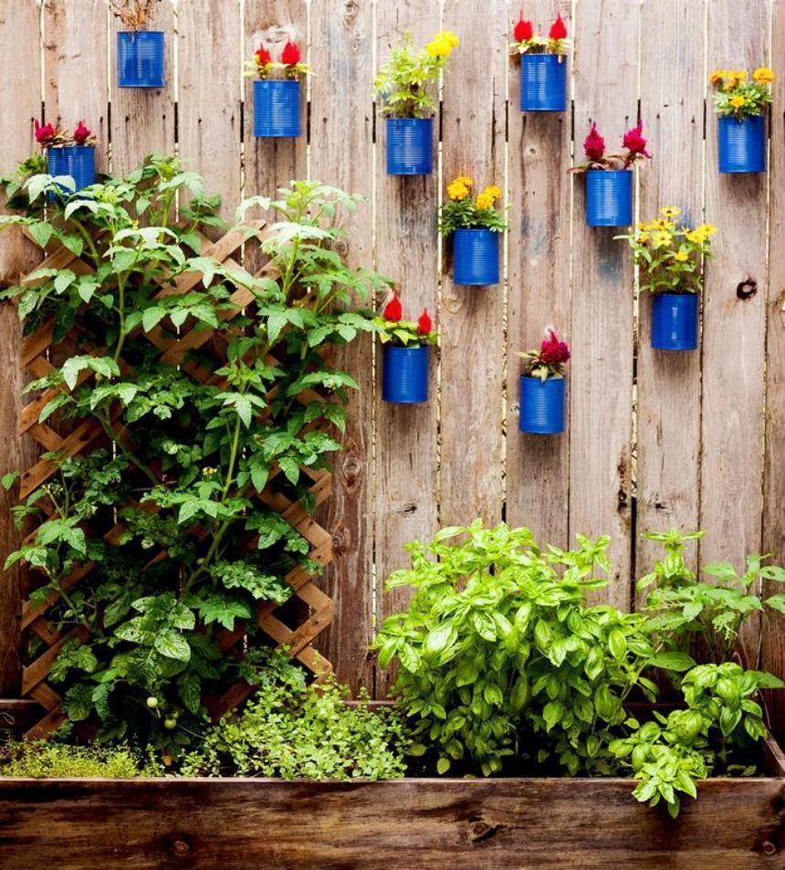jardim-vertical-barato-latas-21