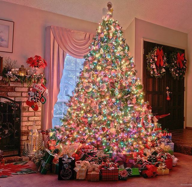 decoracao arvore de natal vermelha:Decoração de Natal Simples 2016: Ideias Incríveis e Fotos