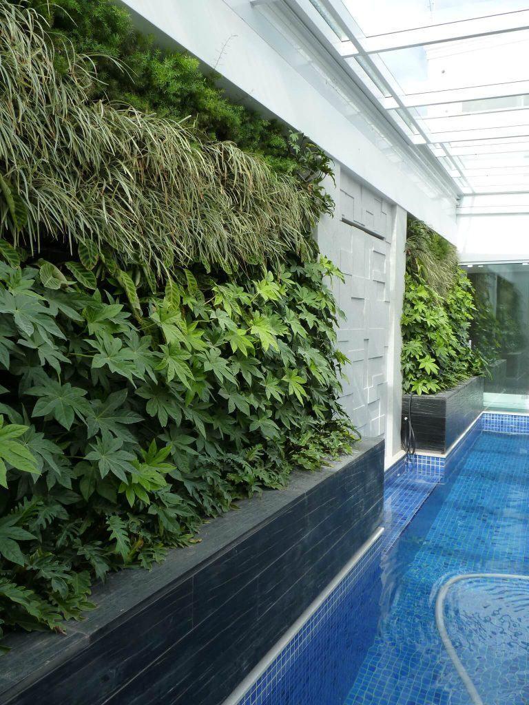 como-fazer-um-jardim-na-parede