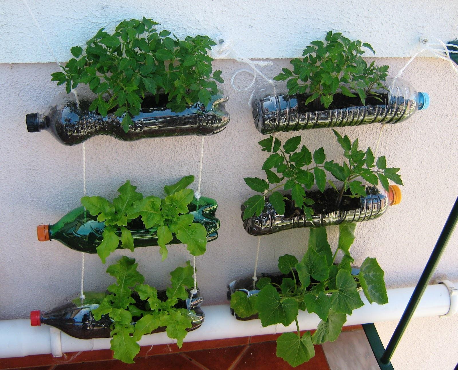 fazer jardim vertical garrafa pet:Como fazer uma Horta com Pouco Espaço: Melhores Dicas, Passo Passo